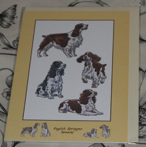SPRINGER SPANIEL GREETINGS CARD with pictures of the breed